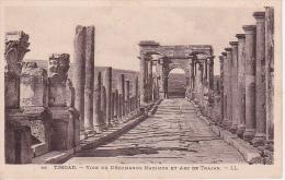 CPA Timgad - Voie Du Décumanus Maximus Et Arc De Trajan (1999) - Batna
