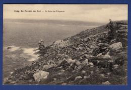 29 CLEDEN-CAP-SIZUN Baie Des Trépassés - Animée - Cléden-Cap-Sizun