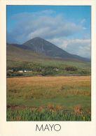 Croagh Patrick, Co Mayo, Ireland Eire postcard