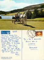 Troutbeck Inn Hotel Motel, Inyanga, Umtali, Zimbabwe Postcard Posted To Botswana 1980 Stamp - Zimbabwe
