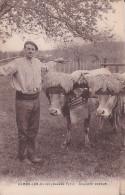 64 -- CAMBO Les BAINS -- Souvenir Basque -- Le Paysan Et Son Attelage De Vaches - Cambo-les-Bains