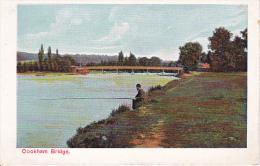 PC Cookham Bridge (2057) - England