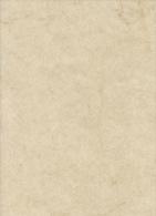 Papier Reliure Relieur Restauration : Un Lot De 7 Feuilles De Papier Elephant Jaune GRAND FORMAT 70 X 100 Cm - Other