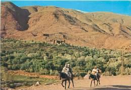 CPM - Dans Le Sud Marocain - Maroc