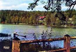 43 Lac De MALAGUET Alt 1045m Paysages Sur Le Lac Et Le Nouveau Chalet - Frankreich