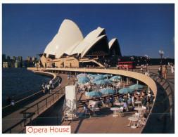 (951) Australia - NSW - Sydney - Opera House Forecourt - Sydney