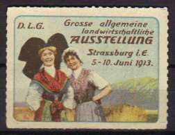 ALSACE - FOLKLORE - EXPOSITION COMMERCIALE / 1913 VIGNETTE PUBLICITAIRE ANCIENNE (ref T166) - Commemorative Labels