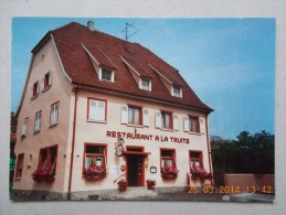 "CPM D´ILLHAEUSERN Restaurant "" La Truite "" - Unclassified"