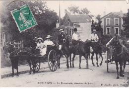 23478 ROBINSON La Promenade ,direction Du Bois - P Javelle -attelage Caleche Cheval Course