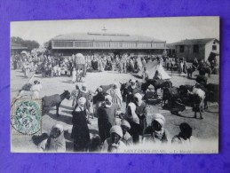 Algérie. Saint-Denis-Du-Sig. Le Marché Couvert. 1907 - Andere Steden