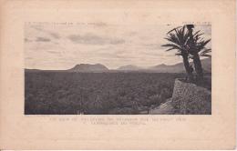 CPA La Mer De Palmiers De Zénagua Vue Du Haut Des Terrasses Du Figuig (Extréme Sud Oranais) (2110) - Marokko