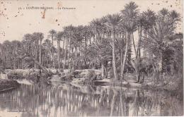 CPA  Colomb-Béchar - La Palmeraie (2113) - Bechar (Colomb Béchar)