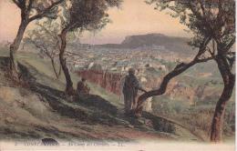CPA  Constantine - Au Camp Des Oliviers - 1913 (2116) - Konstantinopel