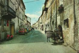 LAZIO -TOLFA (ROMA) - Via Roma - Animata Con Auto D'epoca Ed Asino - Trasporti