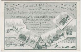 21312g FEDERATION NATIONALE Des SYNDICATS D´ ELEVAGE - CHIEN TRAIT BELGE - Patronage S.A.R Prince Albert - Mosaïque (D) - Chiens