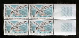 TAAF 103 ** Vogel  ; 4er Block / FSAT Mnh Bird (1976) - Vogels