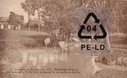 PIETREBAIS (Brabant) - Sanatorium Du Domaine De Chise-Les Vaches De La Vieille Chise Qui Donnent Du Lait Pt Abeilles - Incourt