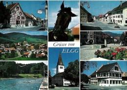 Grüsse Von ELGG Mit Stempel 8353 ELGG 22.12.75 - ZH Zurich