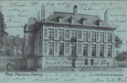 Pecq, Chateau Dubiez (pk13634) - Pecq