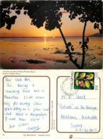 Black River Sunset, Mauritius Postcard Posted 1981 Stamp - Mauritius