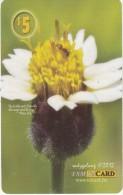 MICRONESIA - Flower, FSM Tel Prepaid Card $5, Used - Micronesia