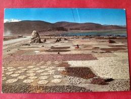 Bolivia Altiplano La Paz -> Belgica Belgique - Bolivie