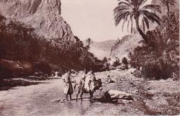 CPA La Porte Du Désert (2169) - Algerien
