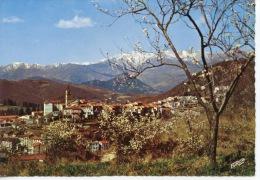 Saint Laurent De Cerdans Printemps En Roussillon Le Valespir - Ville De L'espadrille Catalane N°11 Dentelée - Other Municipalities