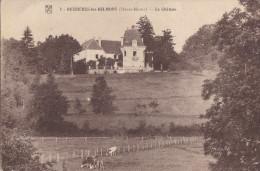 52 BUSSIERES Les BELMONT  Jolie Vue Sur Le CHATEAU  PRAIRIES  VACHES Au Paturage - Non Classificati