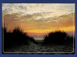 Coucher De Soleil Sur Les Dunes - Controluce