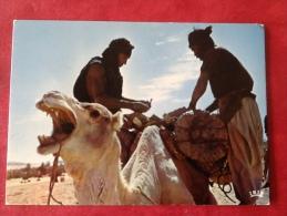 République Du Niger. Camel-drivers 1979 - Niger