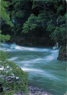 Aya Forest, Miyazaki, Japan Postcard Used Posted To UK 1999 Stamp - Sonstige
