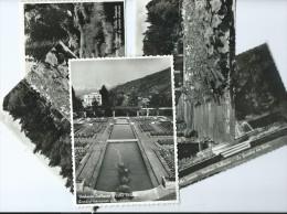 Italie > VERBANIA Villa Taranto - Lot De 5 Cartes Cpsm Photo (voir Scan R/V  De Toutes Les CARTES) - Verbania