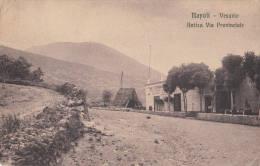 1920 NAPOLI - ANTICA VIA PROVINCIALE - Napoli (Naples)