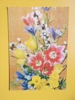 CVECE, BLOEMEN, FLOWERS, BLUME, BLEUR, FLOWER, FLOR, Kembang,tulip / Tulips / Tulipes / Tulipe / Tulpe - Non Classés