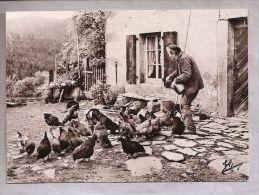 CPM - Les Vieux Métiers - Joel Couchouron - 62, Piou! Piou! … Elles Accourent (Les Vosges) - Basse-cour - Landbouwers