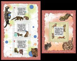 GUINEA 2013 - Wild Cats - YT 6962-4 + BF1584; CV = 47 € - Roofkatten