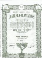 Lukolela Plantations - Afrique