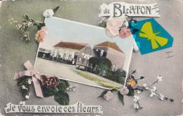 Je Vous Envoie Ces Fleurs De BLATON  - Superbe Carte Colorée - Bernissart
