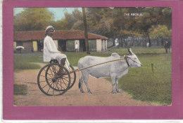 THE RECKLA - India