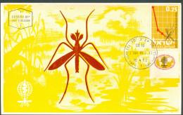 Israel MC - 1962, Michel/Philex No. : 253, - MNH - *** - Maximum Card - Maximum Cards