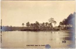 Lagunes Dans Les Landes  (65812) - Ohne Zuordnung