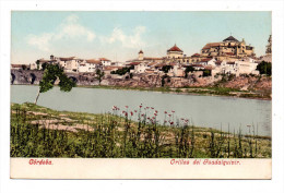Cordoba Orillas Del Guadalquivir Vue Couleur Color Des Berges Du Fleuve De Vuelta En 1900 Indivisa - Magazines: Abonnements