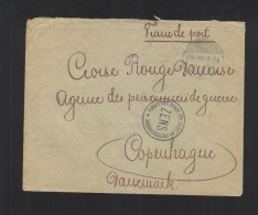 Hungary Cover 1917 To Red Cross Denmark Censor (2) - Hungary