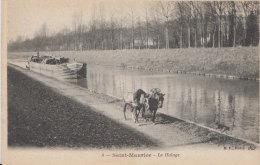 SAINT-MAURICE - 8 - Le Halage - Saint Maurice