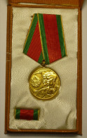 "Roumanie Romania Rumänien Médaille Medal Comuniste "" Colectivizare "" 1962 Original Box - Otros Países"