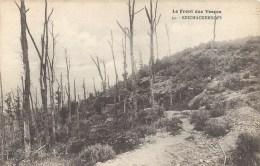 LORRAINE - 88 - VOSGES - Front Des Vosges - REICHACKERKOPF - Other Municipalities