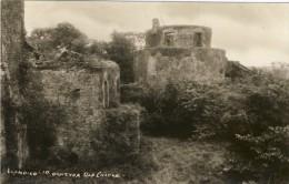 LLANDILO, Dynevor Castle - 2 Scans - Caernarvonshire