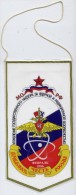 Pennant. MANAGEMENT Supervision Of Nuclear And Radiation Safety Of The Defence Ministry. 1996 - Atomo
