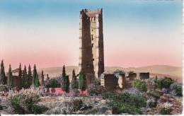 CPA Tlemcen - Ruines De Monsourah - Le Minaret (2405) - Tlemcen